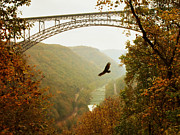 Mary Almond Prints - New River Gorge Bridge Print by Mary Almond