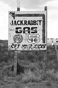 Jackrabbit Art - Route 66 - Jack Rabbit Trading Post by Frank Romeo