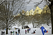 Snow Manhattan Prints - Snowboarding  in Central Park  2011 Print by Madeline Ellis