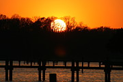 Reflections Pyrography Prints - Sunset Over Chesapeake Bay Print by Valia Bradshaw