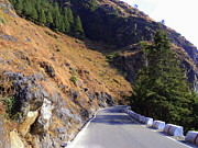 Salman Ravish - Way to Dhanaulti