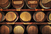 Barrels Photo Framed Prints - Wine barrels Framed Print by Elena Elisseeva
