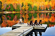 Autumn Woods Posters - Wooden dock on autumn lake Poster by Elena Elisseeva