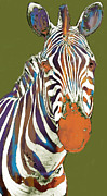 Stripes Mixed Media - Zebra - stylised drawing art poster by Kim Wang