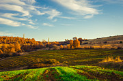 View Digital Art - Landscape - photography by Lyubomir Kanelov
