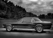 Classic Mustang Framed Prints - 67 Mustang Black and White Framed Print by Thomas Young