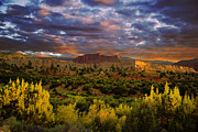 National Originals - Capitol Reef National Park by Mark Smith