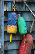 Old Shack Posters - Lobster Buoys Poster by John Greim
