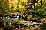 Fall Trees With Stream. Art - Ricketts Glen State Park by Elaine Walsh