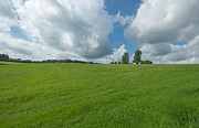 Limburg Photo Prints - Rural landscape in summer Print by Jan Marijs