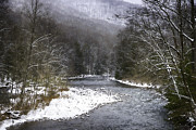 Williams River Scenic Backway Framed Prints - Spring Snow Williams River  Framed Print by Thomas R Fletcher