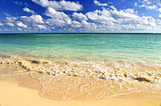 Exotic Photos - Tropical beach by Elena Elisseeva