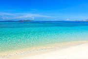 Palawan Posters - Tropical beach Malcapuya Poster by MotHaiBaPhoto Prints