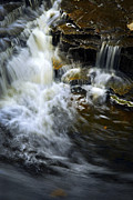 Ecology Photos - Waterfall by Elena Elisseeva