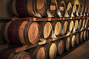 Oak Photos - Wine barrels by Elena Elisseeva