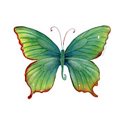 Watercolor. Butterfly Paintings - 74 Green Flame Tip Butterfly by Amy Kirkpatrick