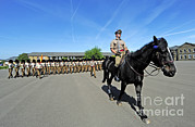 Household Cavalry Framed Prints - 1st Battalion Welsh Guards On The Drill Framed Print by Andrew Chittock