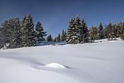Beautiful Winter Landscape Print by IB Photo