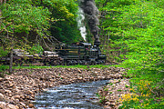 Mary Almond Art - Cass Scenic Railroad by Mary Almond