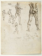 Naked Male Art Photos - Italy, Piemonte, Turin, Royal Library by Everett