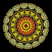 Kaleidoscope Photos - Kaleidoscope Ernst Haeckl Sea Life Series by Amy Cicconi