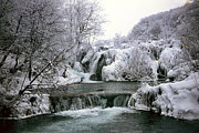 National Pyrography Metal Prints - National Park Plitvice Metal Print by Dr sc Srecko Bozicevic