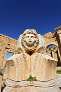 Leptis Magna Posters - Sculpted Medusa head at the Forum of Severus at Leptis Magna in Libya Poster by Robert Preston