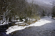 Williams River Scenic Backway Prints - Spring Snow Williams River  Print by Thomas R Fletcher