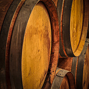 Cellar Prints - Wine barrels Print by Elena Elisseeva