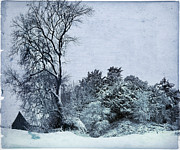 Shed Photo Posters - Wintery Landscape Poster by Angel  Tarantella