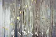 Stripe.paint Photo Prints - Wooden background Print by Tom Gowanlock