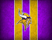 Vikings Photo Framed Prints - Minnesota Vikings Framed Print by Joe Hamilton