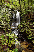 Environment Photos - Waterfall by Les Cunliffe