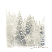 Winter Scenery Prints - Winter Wonderland. Elegant KnickKnacks from JennyRainbow Print by Jenny Rainbow