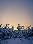 Snow Day Prints - Landscape - photography Print by Lyubomir Kanelov
