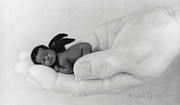 Black Wings Prints - Untitled Print by Anne Geddes