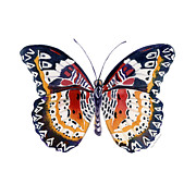Watercolor. Butterfly Paintings - 94 Lacewing Butterfly by Amy Kirkpatrick