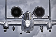 Adam Romanowicz - A-10 Thunderbolt II