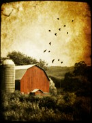 Red Barn Digital Art - A Barn by Gothicolors And Crows