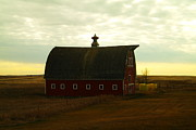 Farming Barns Photo Prints - A Barn In Mcgregor North Dakota Print by Jeff  Swan