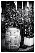 D.w Prints - A Barrel in Marseille Print by John Rizzuto