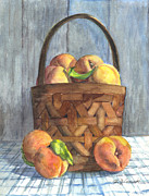 Peaches Drawings Posters - A Basket of Peaches Poster by Carol Wisniewski