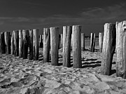 Wood Pylons Photos - A Beach in The Netherlands by Mountain Dreams