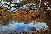 Lanis Rossi Prints - A Beautiful Autumn Day                    Print by Lanis Rossi