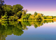Joyce Dickens Metal Prints - A Beautiful Day Reflected Metal Print by Joyce Dickens