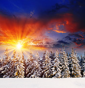 Dew Pyrography Posters - A Beautiful Sunset in the Winter Poster by Boon Mee