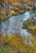 A River In Autumn Posters - A Bend in the River II Poster by Loree Johnson