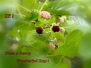 Mary Beth Landis - A Berry Wonderful Day