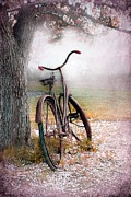 Sophie Vigneault. Framed Prints - A Bicycle For Romance Framed Print by Sophie Vigneault