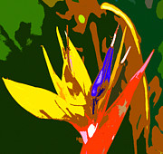 Bird Of Paradise Flower Digital Art - A Bird in Paradise by David Lee Thompson